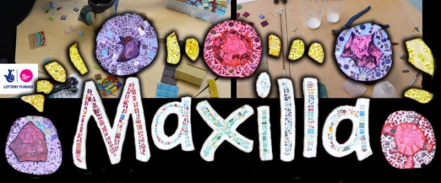 Maxilla_07